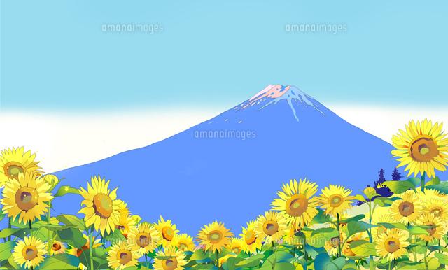 向日葵、富士山、世界遺産、花、風景イラスト、和風風景、夏