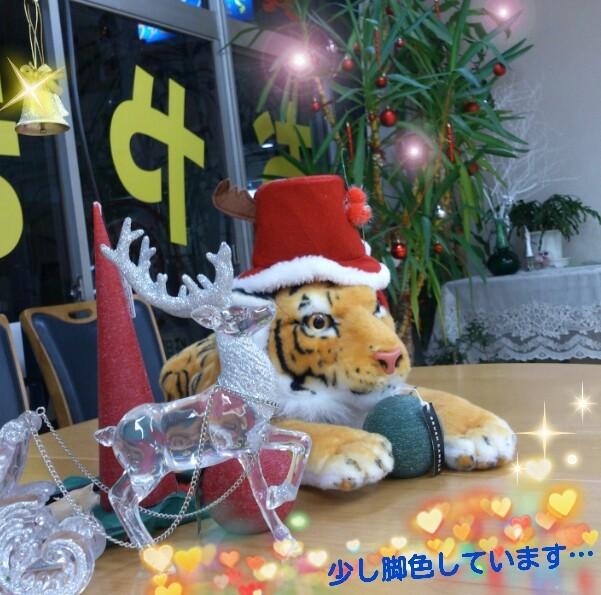 2013-11-12-20-46-42_deco-1.jpg
