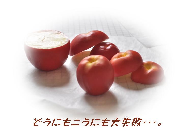 _SSC0118.JPG