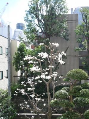 200311-2.JPG