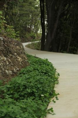 豊島美術館内の道