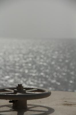 フェリーから海を眺めます