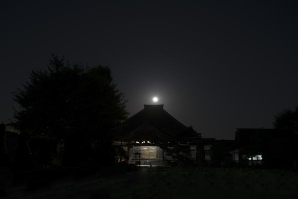 DSC_1660寺と月72.jpg