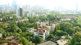 今日の上海は晴れ