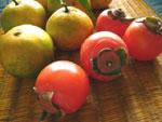 温州みかんと小さい柿