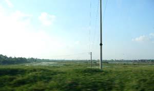 ずーっと広がる湿地帯