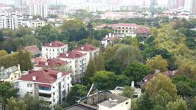 紅葉の上海