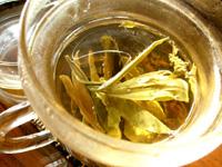 苦丁茶プーアール茶