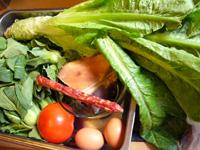 咸肉、香腸(中華ソーセージ)、萵笋(セルタス・茎レタス)、小青菜(小チンゲン菜)、蕃茄(トマト)、葱、生姜