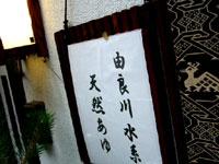由良川水系天然の鮎