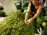 市場の枝豆500g16円