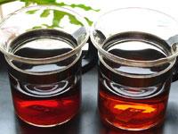 写真左:「鳳凰沱茶93年プーアル茶」 写真右:「鳳凰沱茶94年プーアル茶」