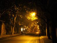 上海の寒い夜道