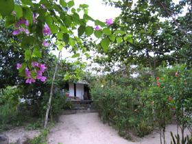 リゾートの小屋