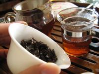 黄印7542七子餅茶プーアル茶