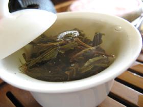 黄印7542七子餅茶