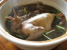 鴿子十全大補湯