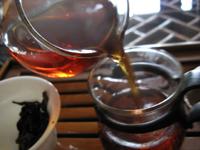 七子紅帯青餅プーアル茶