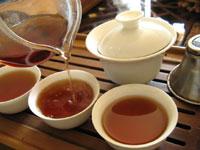 早期紅印春尖散茶