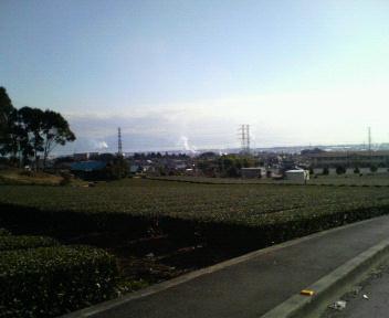 茶畑&駿河湾&伊豆半島