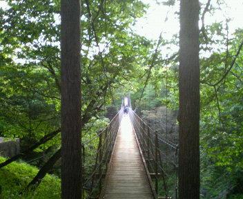 明日への掛け橋
