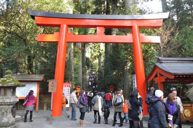 2010箱根神社鳥居
