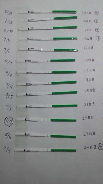 高温期9日目 排卵検査薬