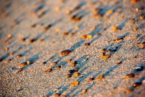 朝陽砂浜−4