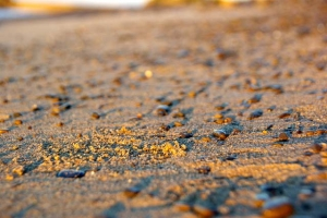 朝陽砂浜−6