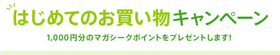 magaseek1,000円割引クーポン