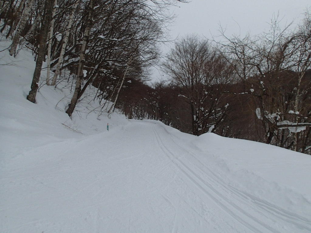 宿泊者限定 雪上で自転車走行体験〜!