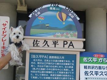 20100819-sakudaira-pa-3