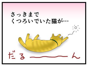 やさぐれ猫 1