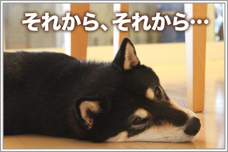豆乳deチーズ☆06