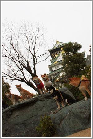 太閤さんの梅園巡り08