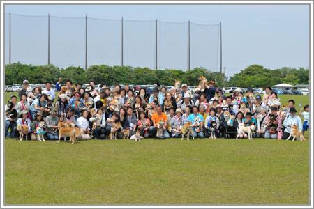 柴犬クラブオフ会in浜名湖01