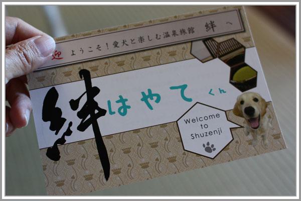 2013修善寺03