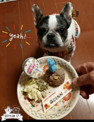 QUINNちゃん お誕生日 8歳