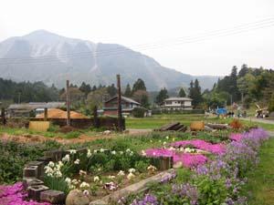 山里と武甲山