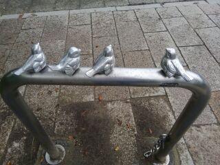 161003_鳥
