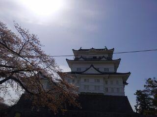 170418_小田原城