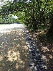 170826_散歩