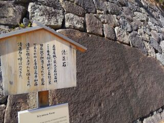 180214_でかい石