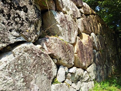 190715萩城石垣