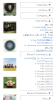 square_sample_tree_before02