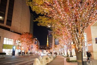 六本木ヒルズ けやき坂 イルミネーション 2014 その1