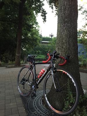 ロードバイクで早朝のジブリ美術館