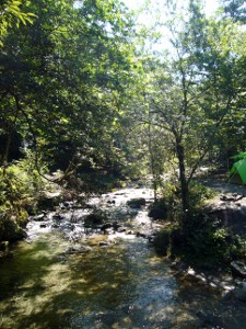 道志の森キャンプ2-9