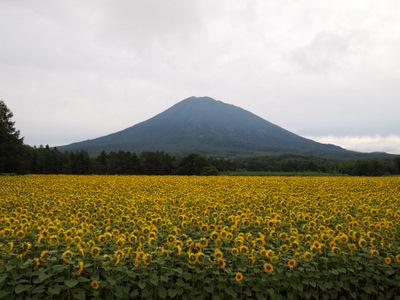 南北海道旅行三日目