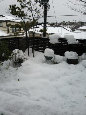すけ 雪かき もん